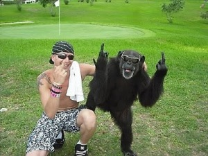 monkey_middle_finger_20100104_1363225097